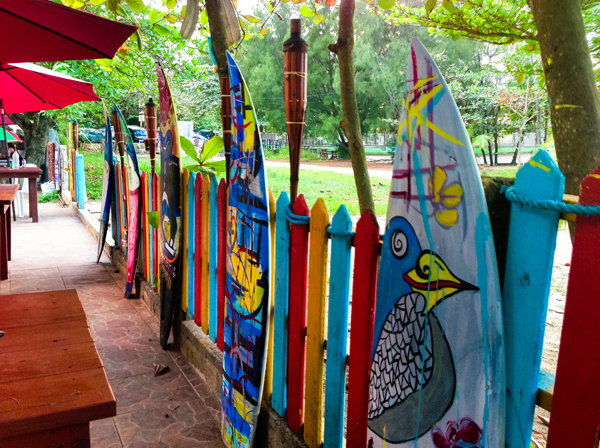 Photo of surboards on fence at Isabela Puerto Rico.